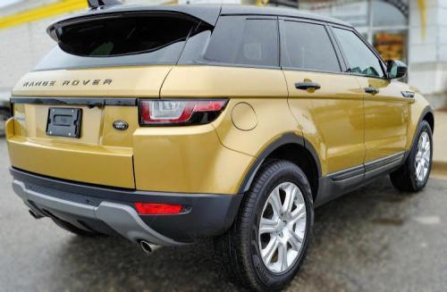 Range Rover Evoque Back